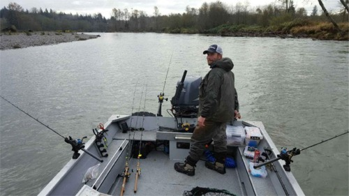 Fishing Guide Patric Gaffney pulling plugs for fall coho and chinook  in high water conditions